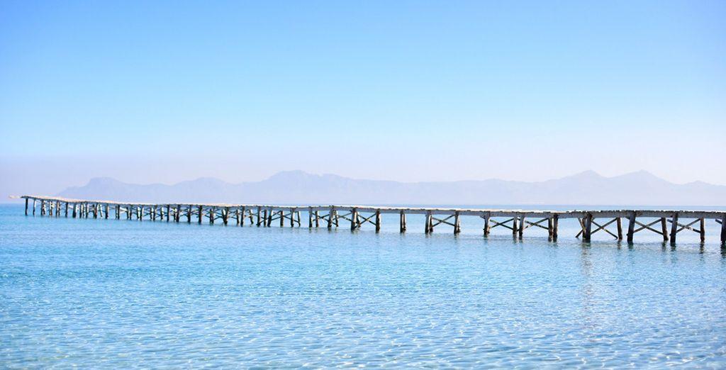 Bienvenido a tu particular paraíso llamado Mallorca - Las Gaviotas Suite 4* Palma de Mallorca