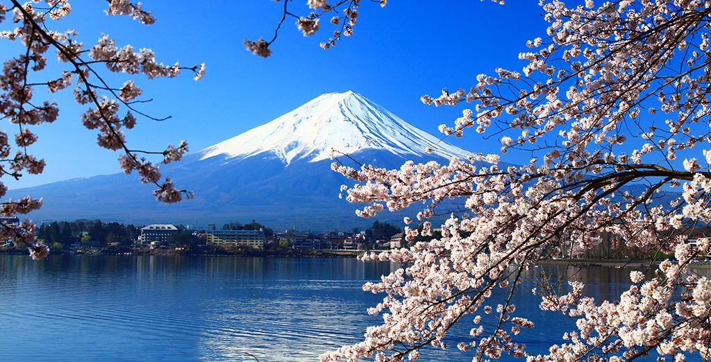 Tokyo avec Voyage Prive