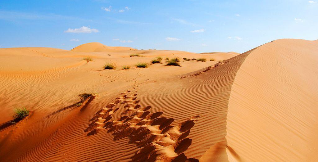 Érigée du désert