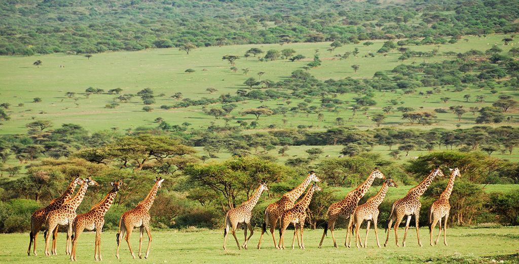 La Tanzanie avec Voyage Prive