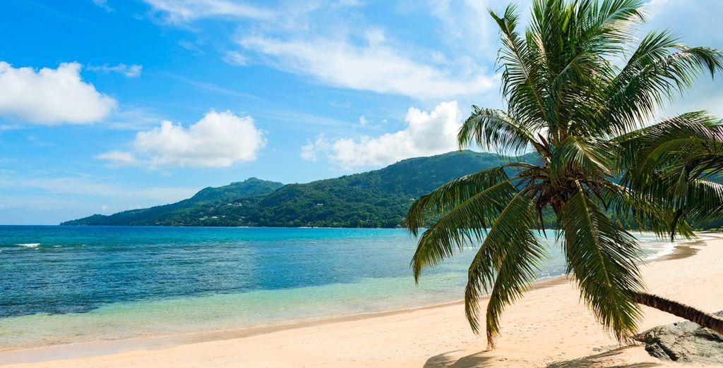 Les Seychelles avec Voyage Prive