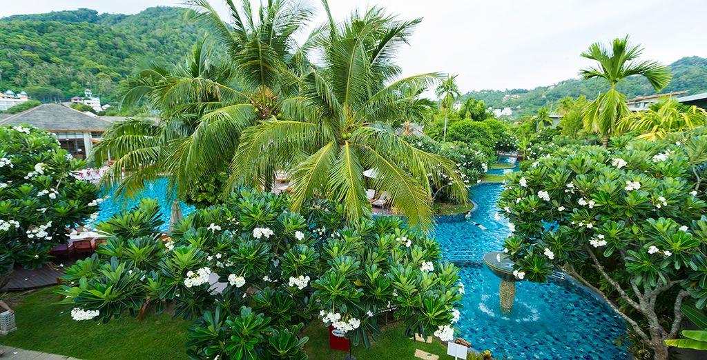 Un hôtel atypique où la piscine est un atout indéniable