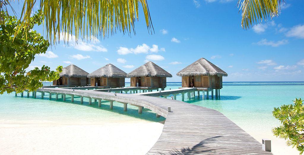 Lux maldives 5 voyage priv jusqu 39 70 for Sejour complet maldives