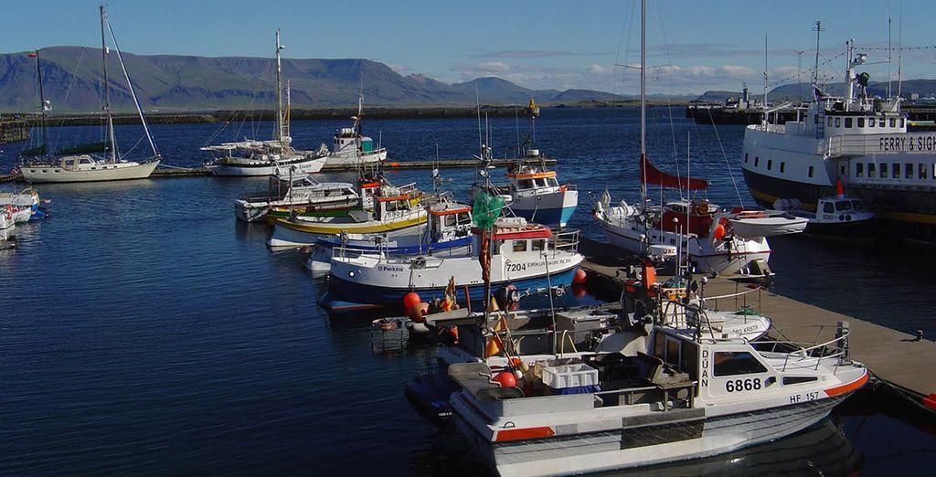 Explore Reykjavik Marina