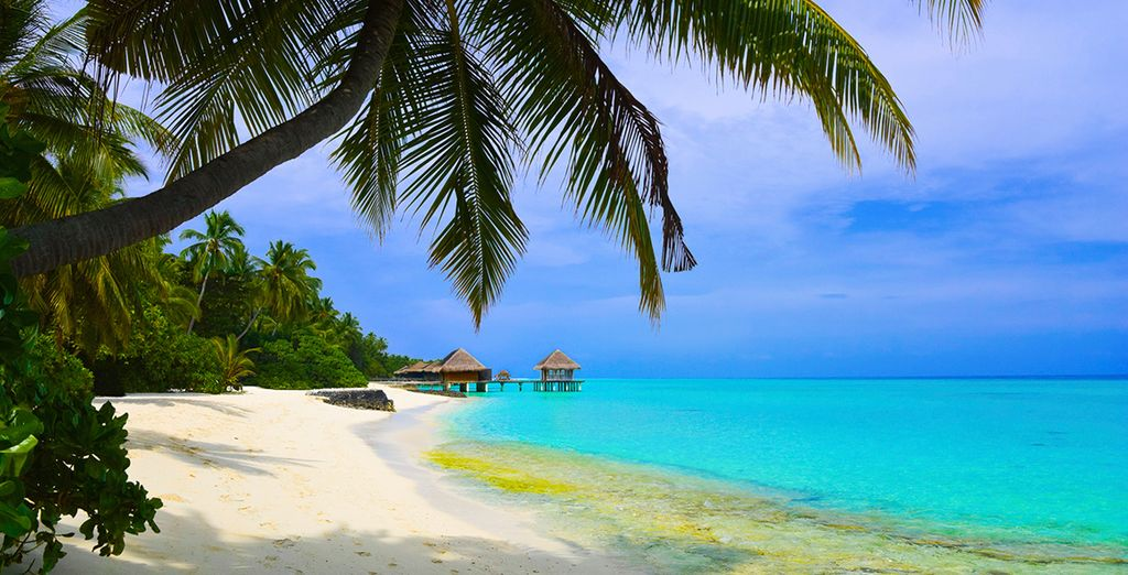 The Maldives is arguably one of the top beach holiday destinations