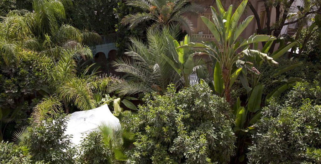 Entspannen Sie in den luxuriösen Gärten