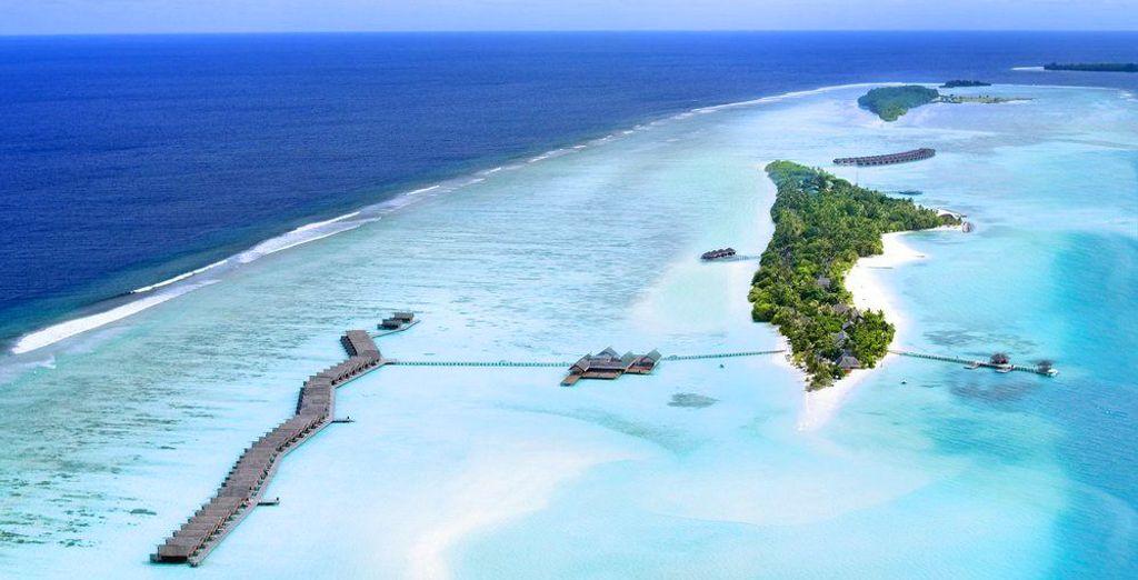 Cap auf den Malediven!