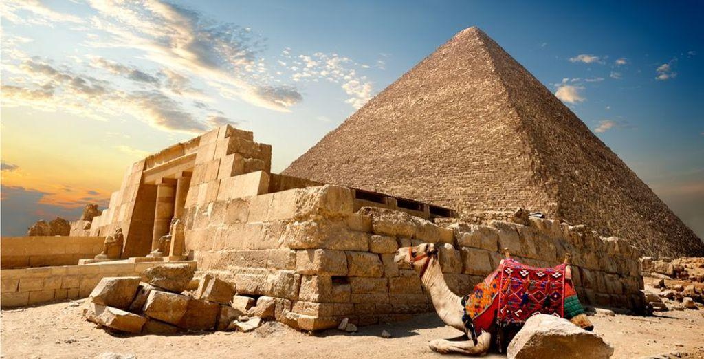 Buchen Sie Ihren Urlaub in Ägypten