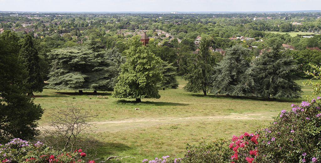 Sie befinden sich in einer idealen Lage um beeindruckende Sehenswürdigkeiten, wie King Henry's Mound im Richmond Park zu besuchen