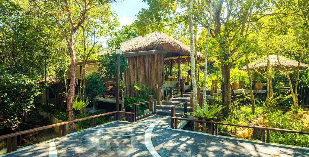 In Koh Yao Yai geht es ab in den Dschungel