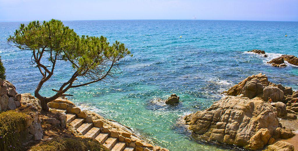 Baden Sie im türkisfarbenem Meer