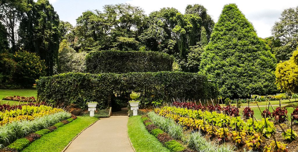 Besuchen Sie den königlichen Botanischen Garten
