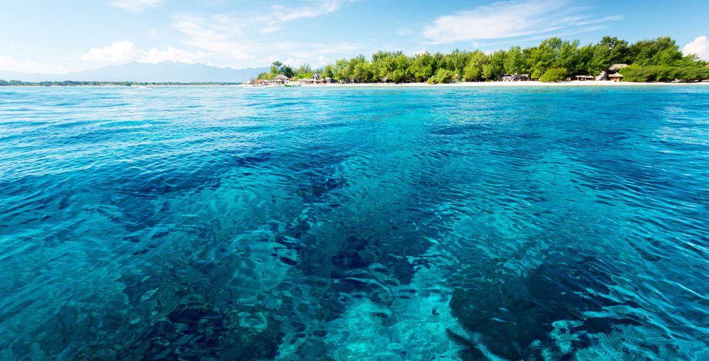 Springen Sie ins türkisblaue Wasser