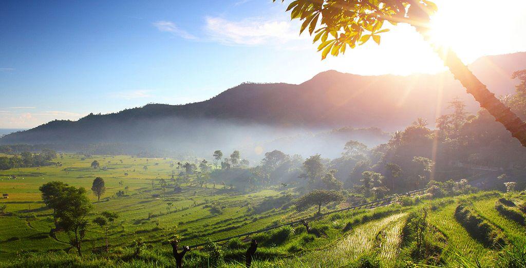 ... zwischen Reisfeldern und unberührter Landschaft