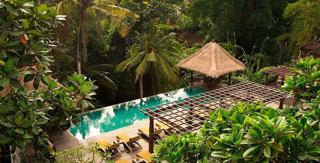 Herzlich willkommen auf Bali