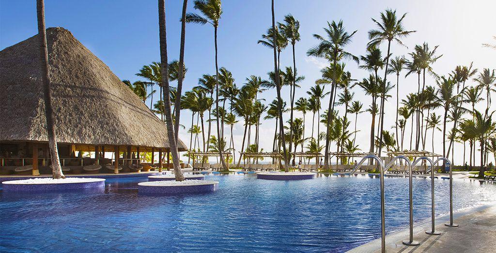 Entdecken Sie das Barcelo Bavaro Beach Resort
