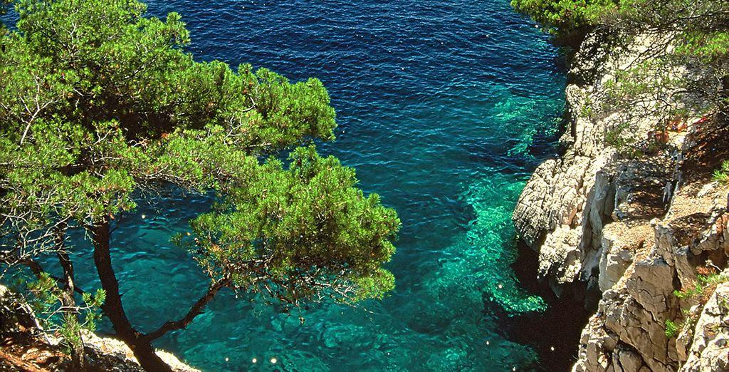 Machen Sie einen Ausflug zu den Calanques und baden Sie im türkisfarbenen Meer!