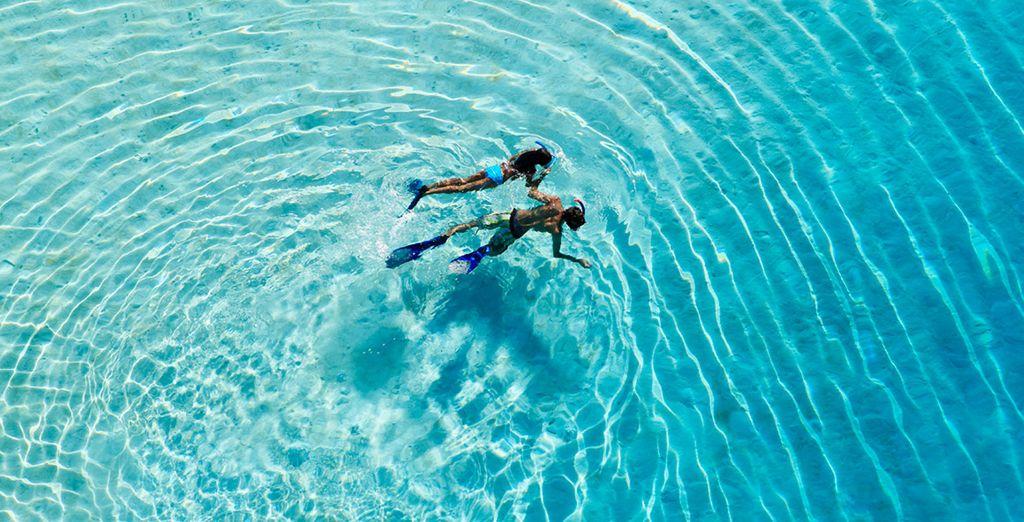 Bora Bora Urlaub