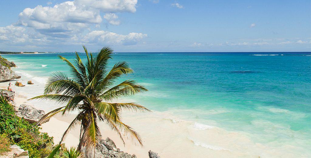 Buchen Sie einen Traumurlaub in der Karibik