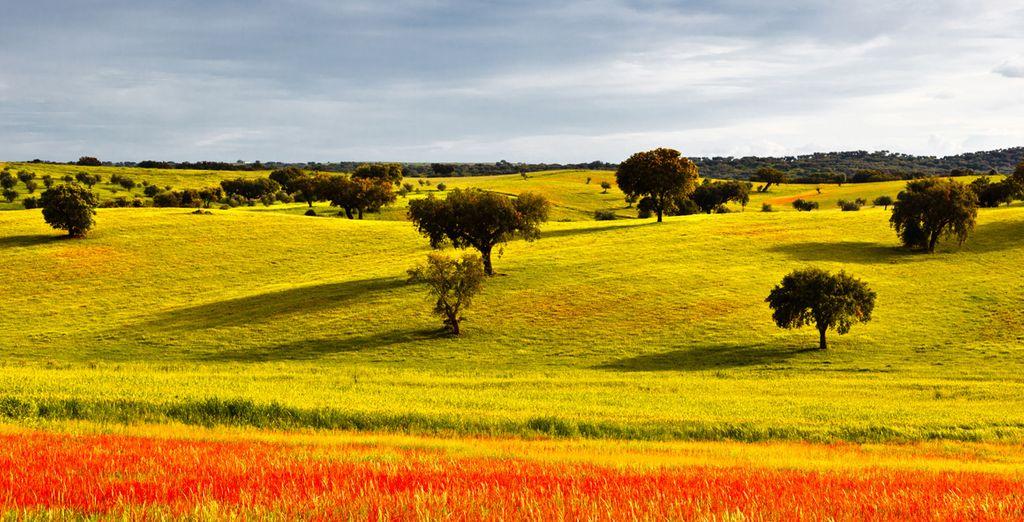 Admira los magníficos paisajes de Alentejo