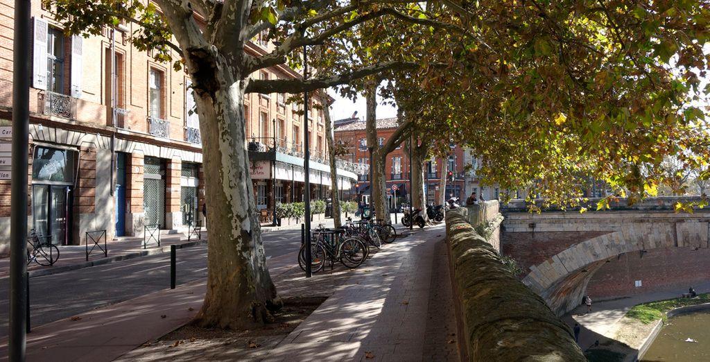 Explora las calles de Toulouse