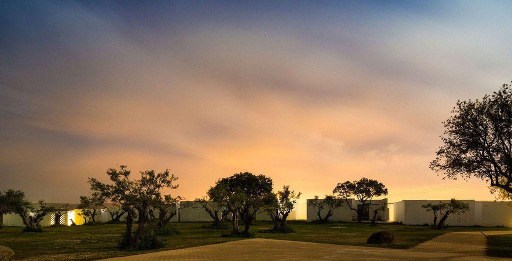 Descubre Ecorkhotel, un hotel ecológico de reciente construcción en Évora...