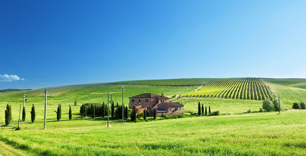 Llanuras verdes infinitas y cielo azul le esperan en la Toscana