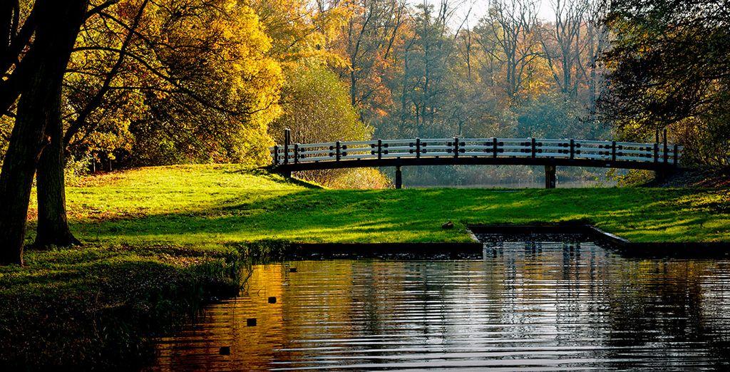 Estarás a un paso del parque Amsterdamse Bos