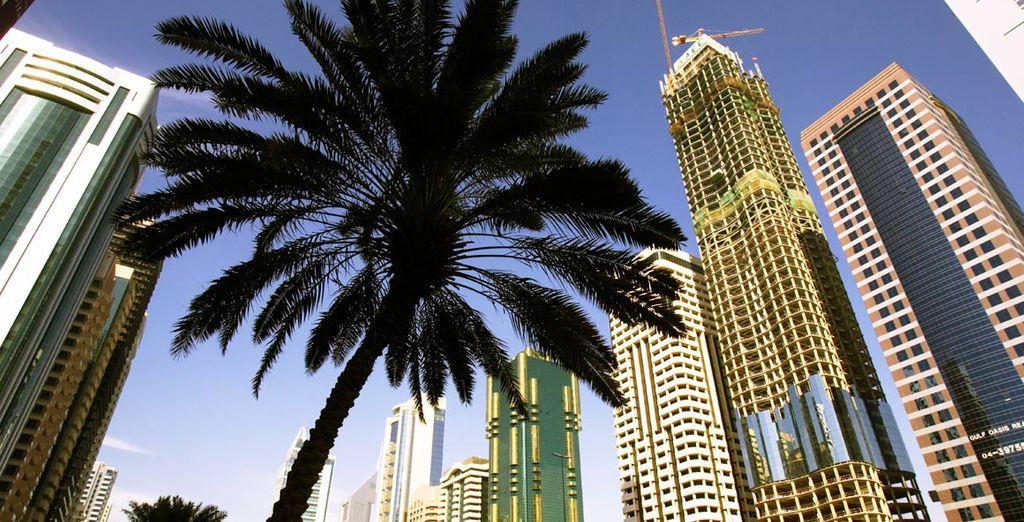 Venga a visitar la preciosa ciudad de Dubái