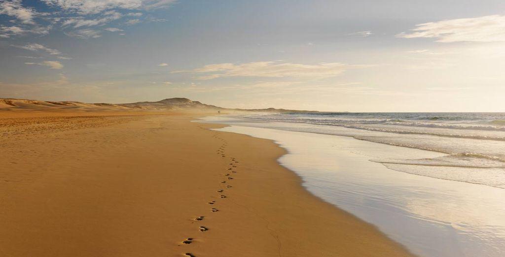 Disfrute de las magníficas playas de la zona