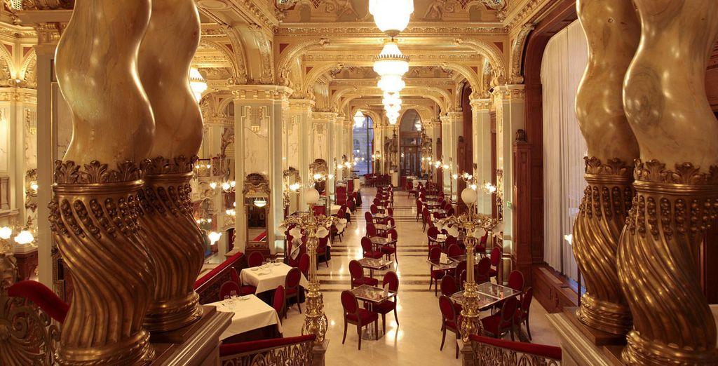 Admire el maravilloso restaurante