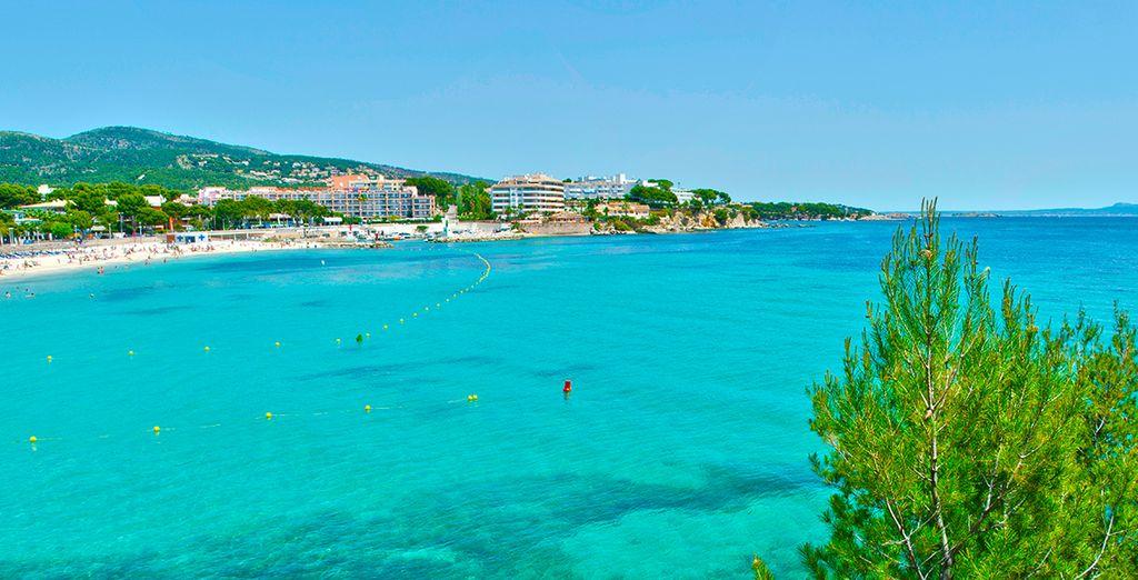 Disfrute de unas vacaciones en Mallorca