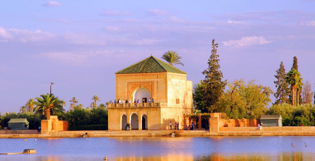 Visite todas las mezquitas y lugares turísticos