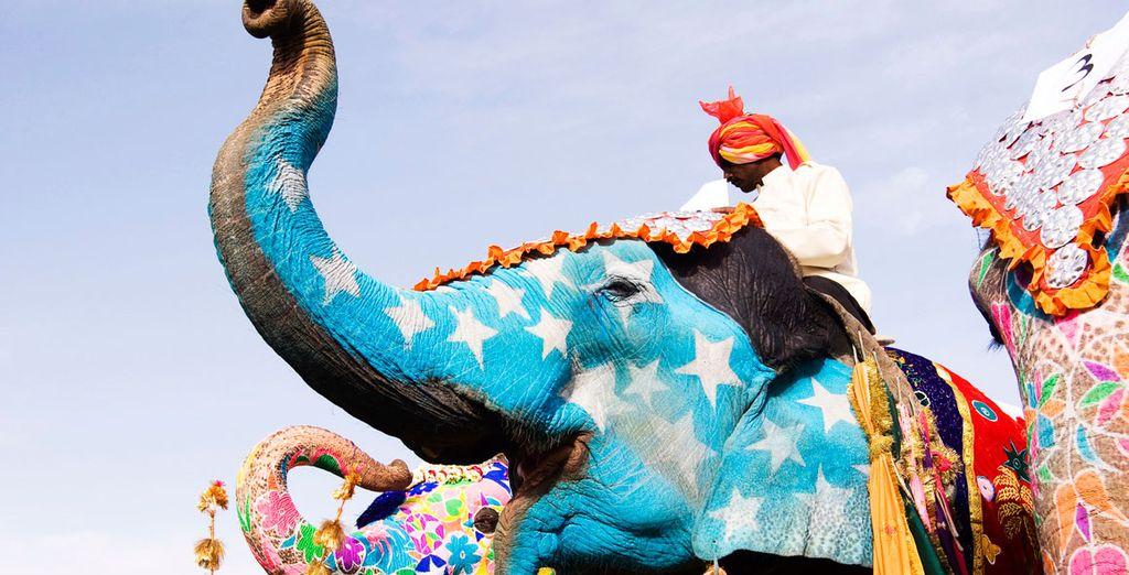 Subirá a lomos de un elefante hasta llegar al fuerte Amber