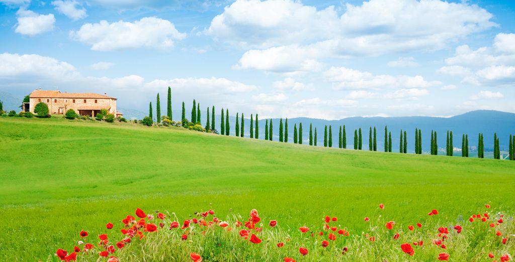 Relax en La Toscana en un amplio apartamento