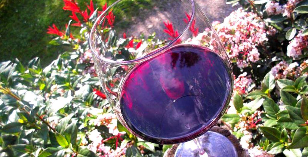 Le encantará la degustación de vino y aceite propio de la Toscana