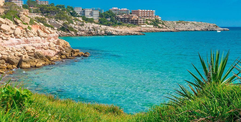 Encontrará un entorno ideal para sus vacaciones
