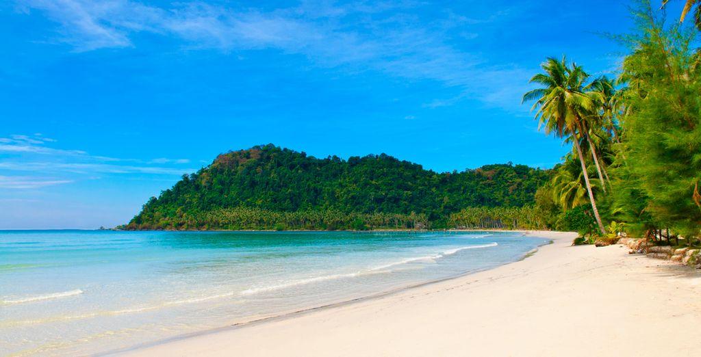 Un lugar paradisíaco para sus vacaciones