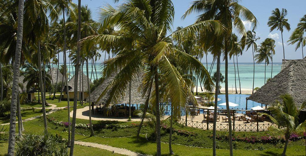 Un resort rodeado de naturaleza