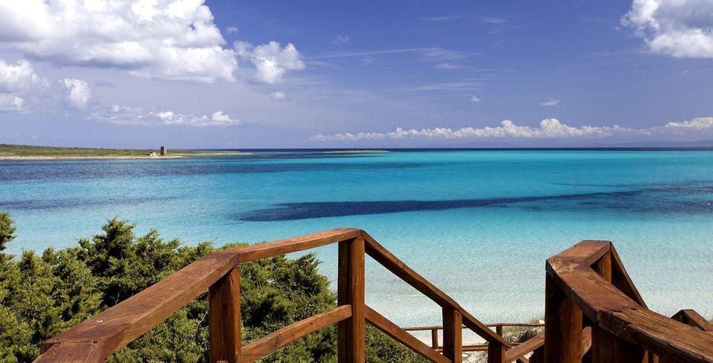 Visite la isla de la Maddalena y maravíllese con sus fantásticas playas