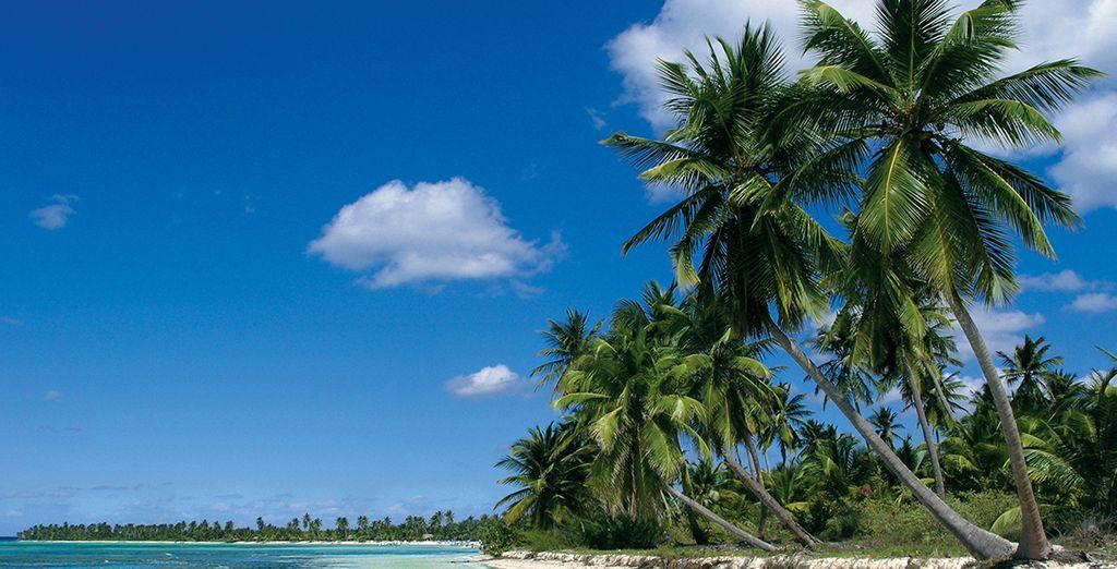Punta Cana es un destino idílico