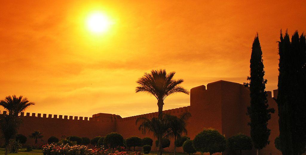 Déjate enamorar por la belleza de Marrakech