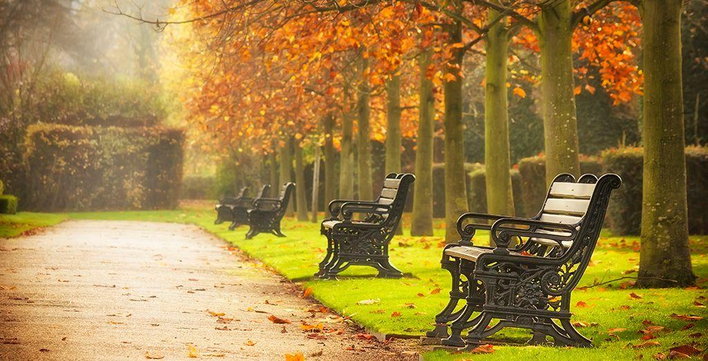 Disfruta de los verdes parques, agradables durante todo el año