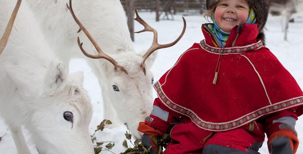 ¿Quieres conectar profundamente con la antigua manera de vivir de los nativos de Laponia?