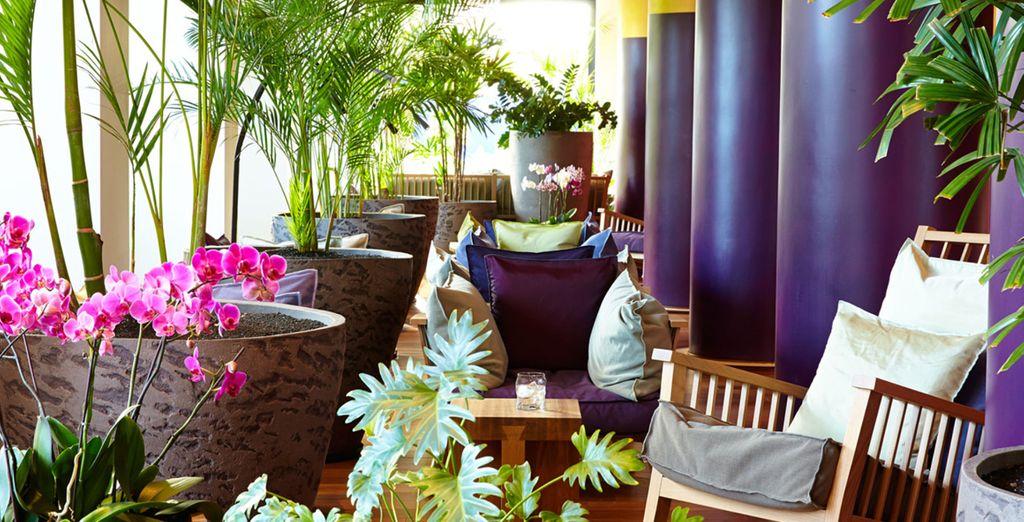 Relájate en la amplia terraza situada junto a los preciosos jardines