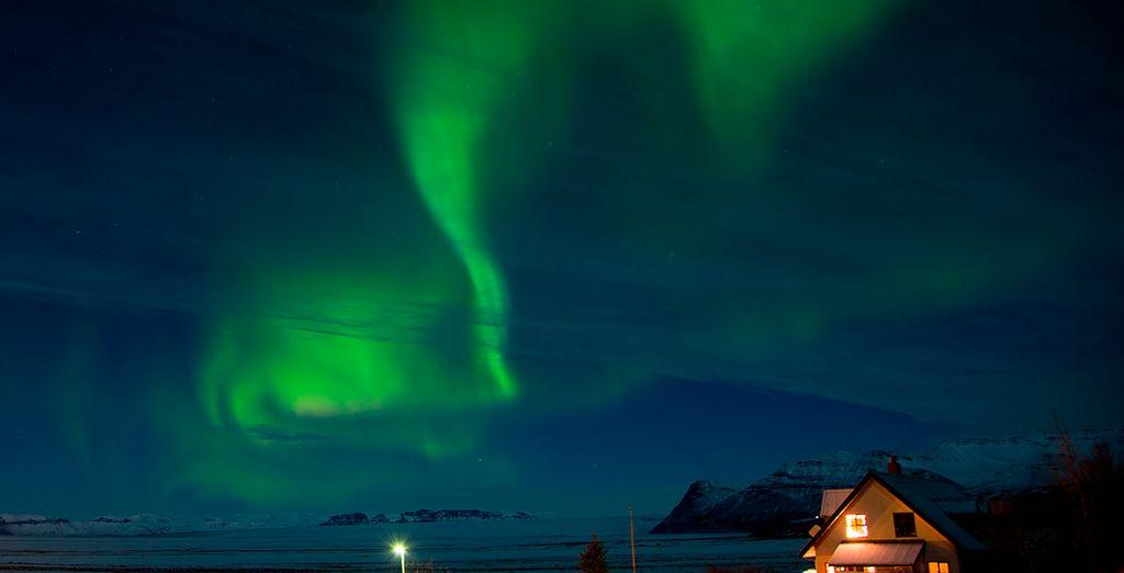 Sadréis en búsqueda de auroras boreales, un hermoso fenómeno de la naturaleza