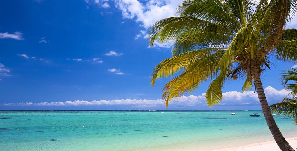 ¡Maldivas te espera!