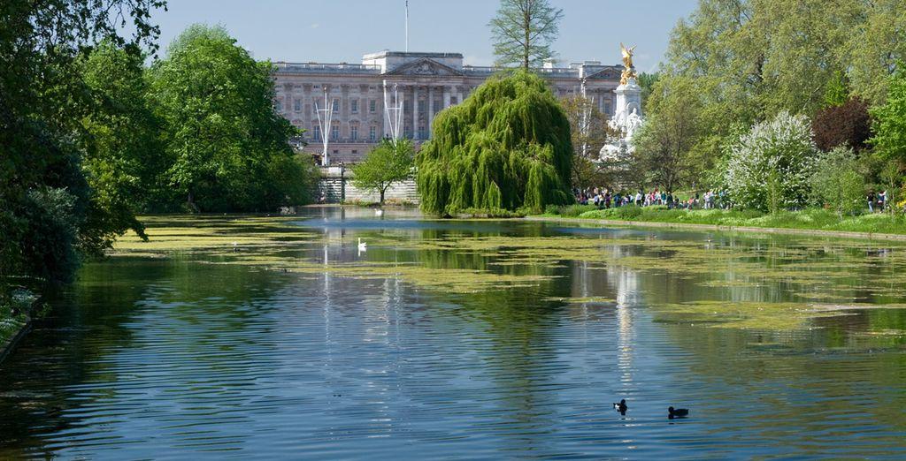 Atraviesa Green Park para llegar a Palacio de Buckingham