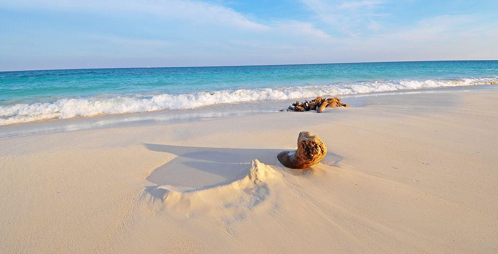 Una de las zonas más bellas para los amantes del snorkel