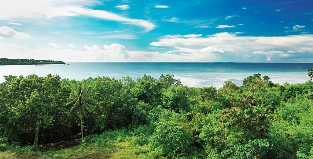 Unas merecidas vacaciones en Panglao